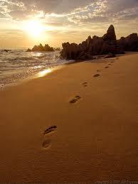 footprints III